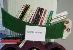 Boites à livres à Condrieu